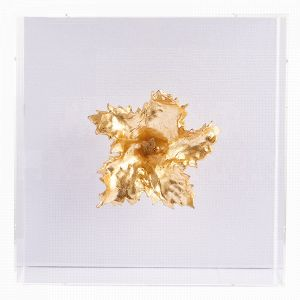 Aidan Gray Fragment No. 24 is a staghorn fern-like explosion of a sculpture that floats inside an acrylic shadowbox frame